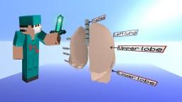 Lungs [Anatomy] Minecraft
