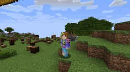 How to post skins Profecionally on PMC Minecraft Blog