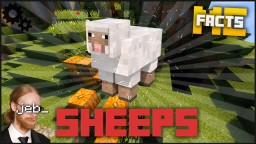5 facts about sheeps Minecraft Blog Post