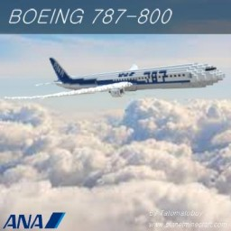 Boeing 787-8   All Nippon Airways Minecraft Map & Project