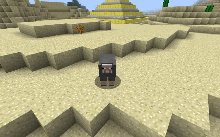 Sheeps stuck