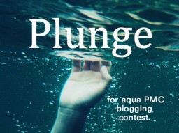 Plunge (Contest 3rd Place) Minecraft Blog