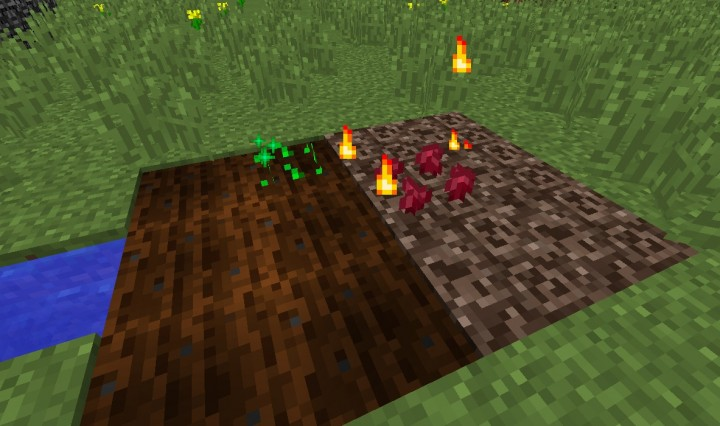The fixed particles!