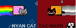 How nyan cat and tac nayn were made. Minecraft Blog