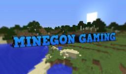 Minegon Gaming - Plots Survival Minecraft Server