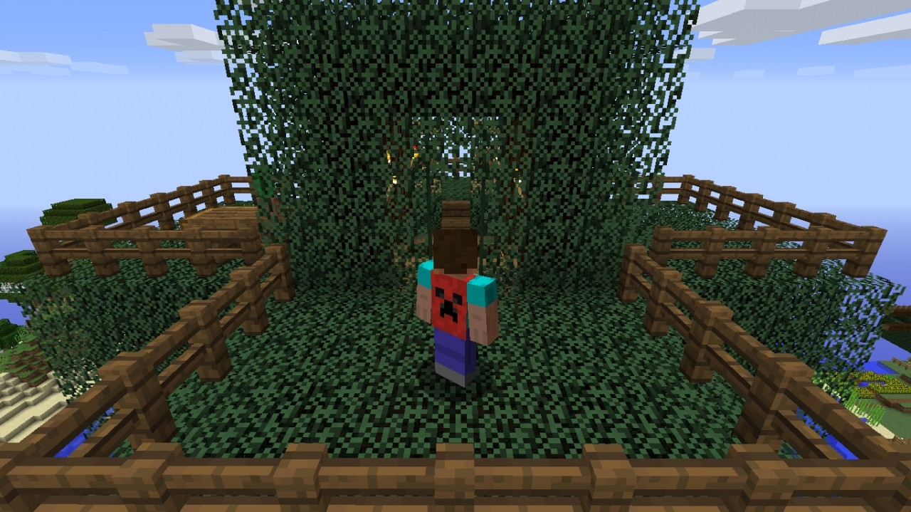 How To Get a Cape in Minecraft No Mods Minecraft Blog