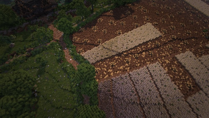 Wheat fields, using the medieval open field system.