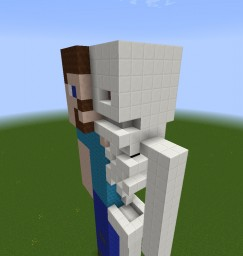 Steve Anatomy Minecraft Map & Project