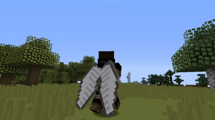 how to get wings in minecraft