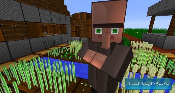 An NPC Farmer.