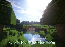 Oerlis Realistic Photo Pro by DelTaz {x128} {x256} [1.7.10] [1.8]