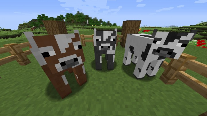 McPatcher Cows