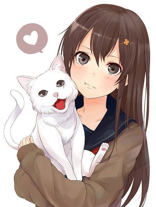 Anime Characters 2018 : Cat freak minecraft