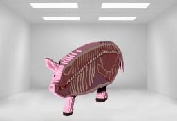 Pig - Anatomy