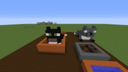 baby cat Minecraft Map & Project