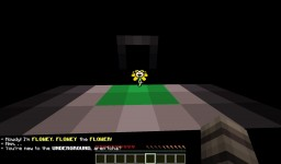 Undertale Adventure Map Minecraft Project