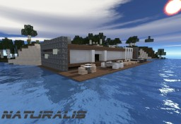 Naturalis - Modern House Minecraft Map & Project