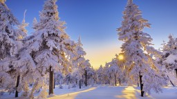 ⋨ℒ.ḭ.℘.ȿ.ℯ⋩ The Beauty of Winter~ Photography {Popreel!} Minecraft Blog