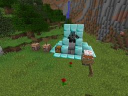 how to put ur skin on an armorstand (downloadebl) Minecraft Map & Project