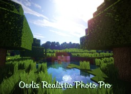 Oerlis Realistic Photo Pro by DelTaz {x128} {x256} [1.7.10] [1.8] (Updated EveryDay !)