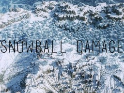 [Bukkit Plugin] Snowball Damage (Modify Egg and Snowball Damage)