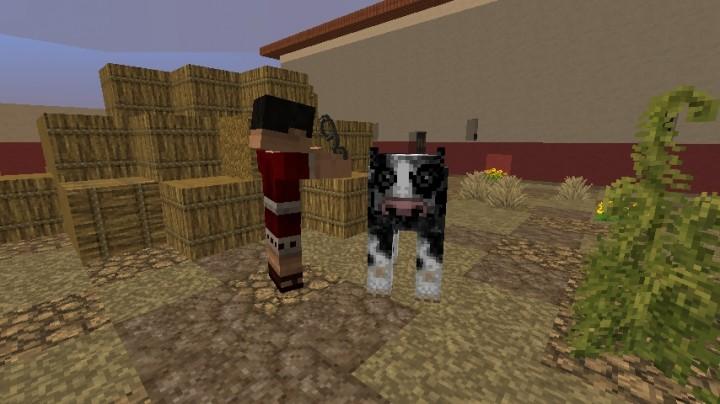 A Slave Walking A Cow