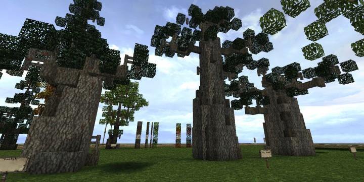 The three baobab trees small, big and medium