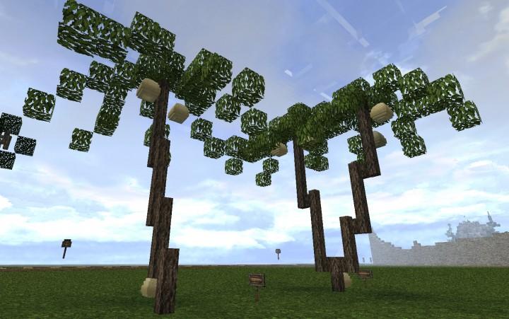 Coconut palmtrees