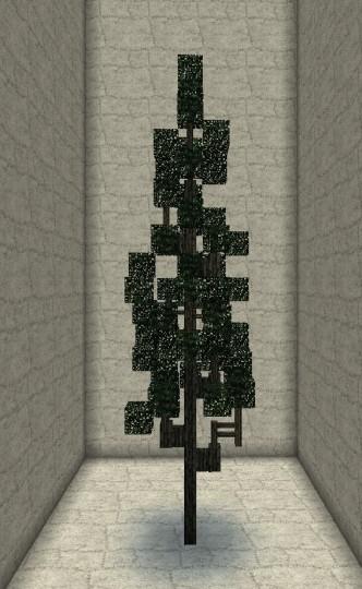 Cypres tree