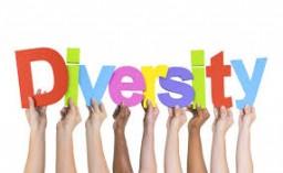 Art Blogs: Problem of Diversity Minecraft Blog Post
