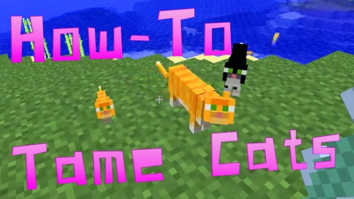 How To Tame An Ocelot In Minecraft Pc