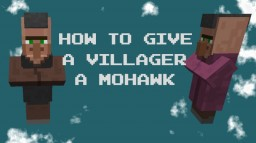 How To Give A Villager A Mohawk Minecraft