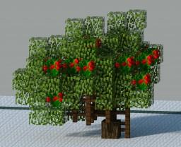Heteromeles Arbutifolia (Shrub-Tree Hybird) Minecraft Map & Project