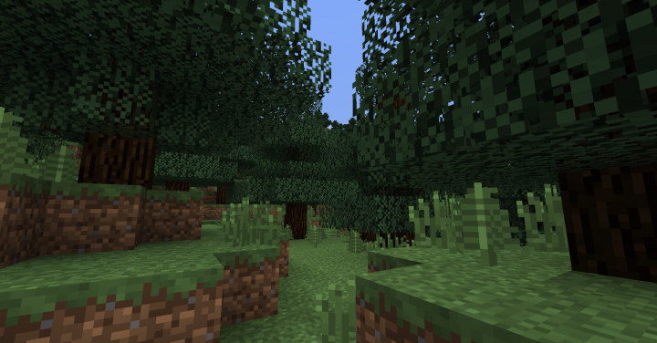 Silf Forest - Sancraft
