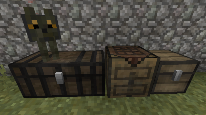 Chests Table and a Dog