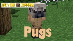 Pugs - Only One Command Minecraft Project