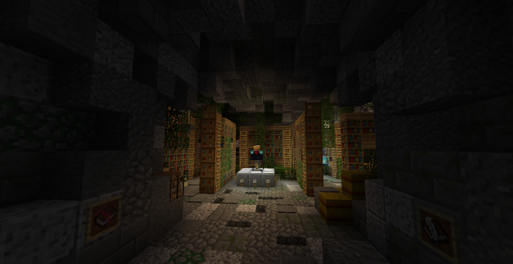 A deserted library located in Brairions prison