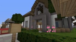 my private server town Minecraft