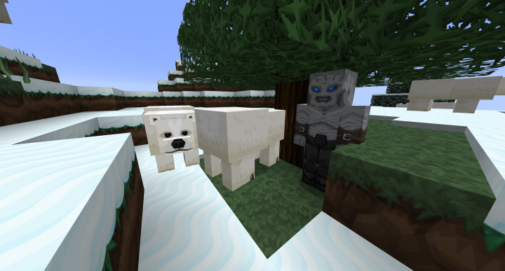 Polar bears and Stray