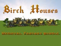 Bundle: Birch Houses Minecraft Map & Project