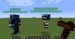 You see, THIS is why you don't put 64x64 skins on NPCs in mods only supporting 64x32. Minecraft Blog Post