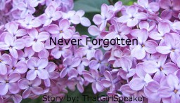 Never Forgotten - Story (5/5 Chapters. Finished) Minecraft