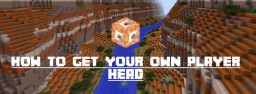 How to Get Your Own Head [1.7+] Minecraft Blog Post