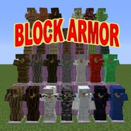 [1.10] Block Armor