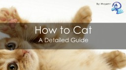 How to Cat. Minecraft Blog