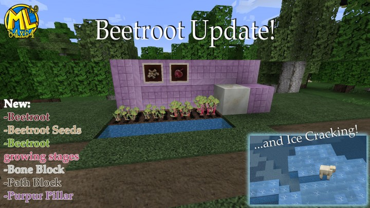 Newest Update!