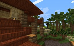 Polynesian House Minecraft Project
