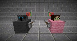 Find Pat and Jen RACE! Minecraft Project