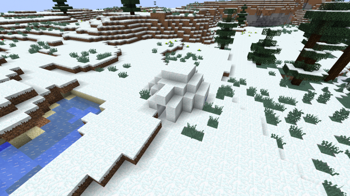 The Igloo Project Minecraft Project