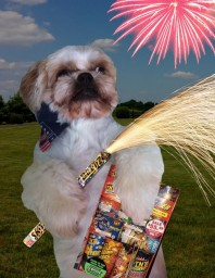 How to make animal fireworks!!! (Must need lots of animals)